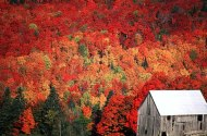 destinations1225114035-picture onbekend Vermont