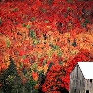 destinations1225114035-picture onbekend Vermont