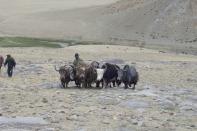Ladakh 2008 124